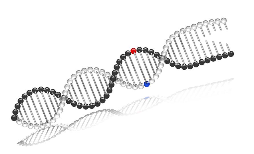 Genomind Testing